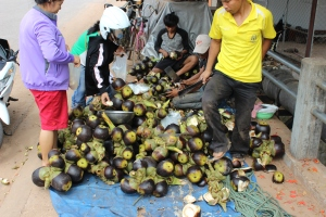 Takhek, Laos: Counting Coconuts