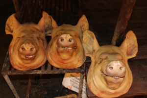 Pig Heads in Chumpon, Thailand