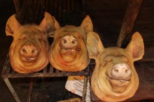 Pig Heads in Chumpon, Thailand
